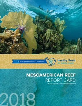 Mesoamerican Reef Report Card 2018: An Evaluation of Ecosystem Health