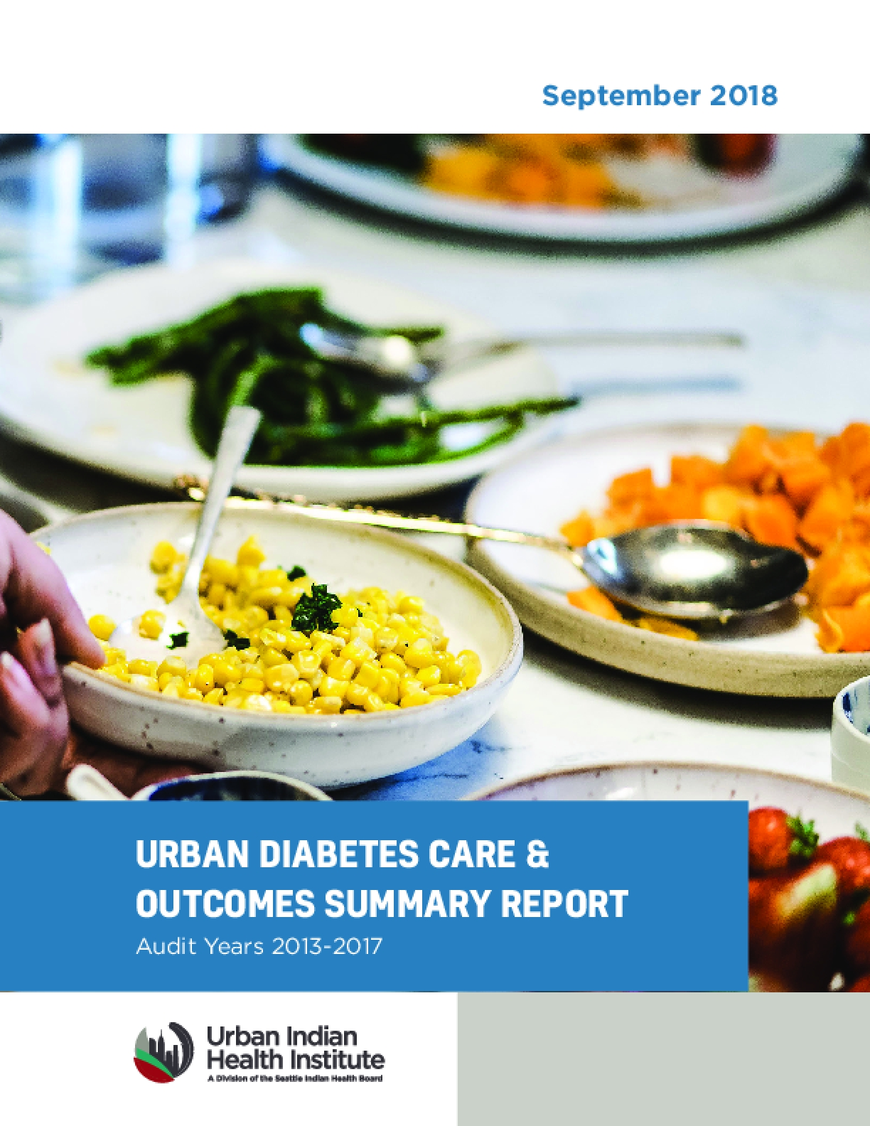 Urban Diabetes Care & Outcomes Summary Report, Audit Years 2013-2017