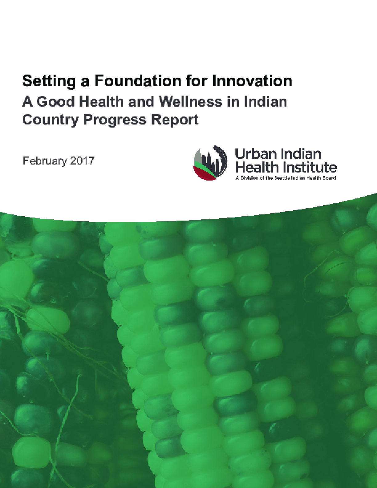 Setting a Foundation for Innovation: A Good Health and Wellness in Indian Country Progress Report
