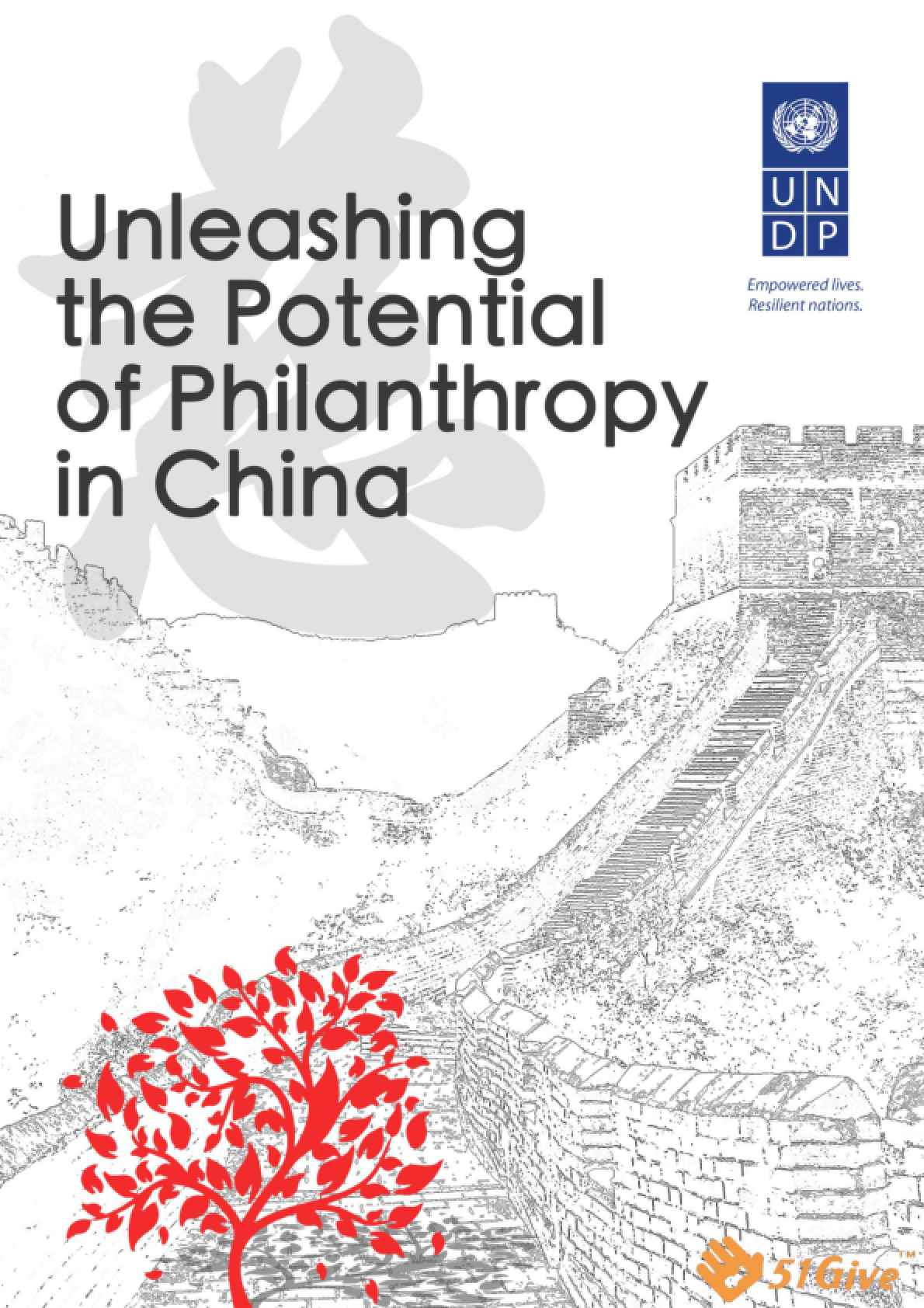 Unleashing the Potential of Philanthropy in China