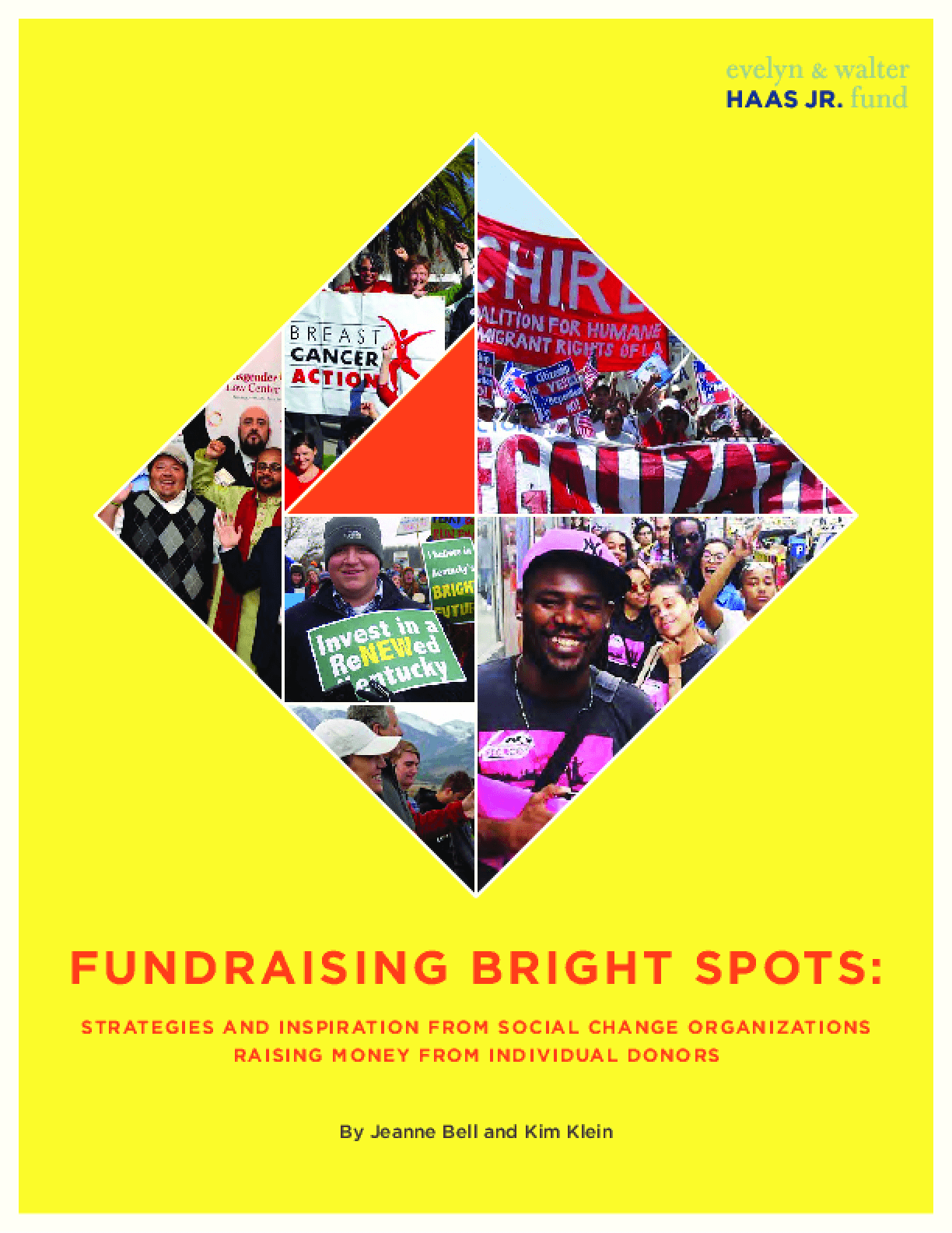 Fundraising Bright Spots: Strategies and Inspiration from Social Change Organizations Raising Money from Individual Donors