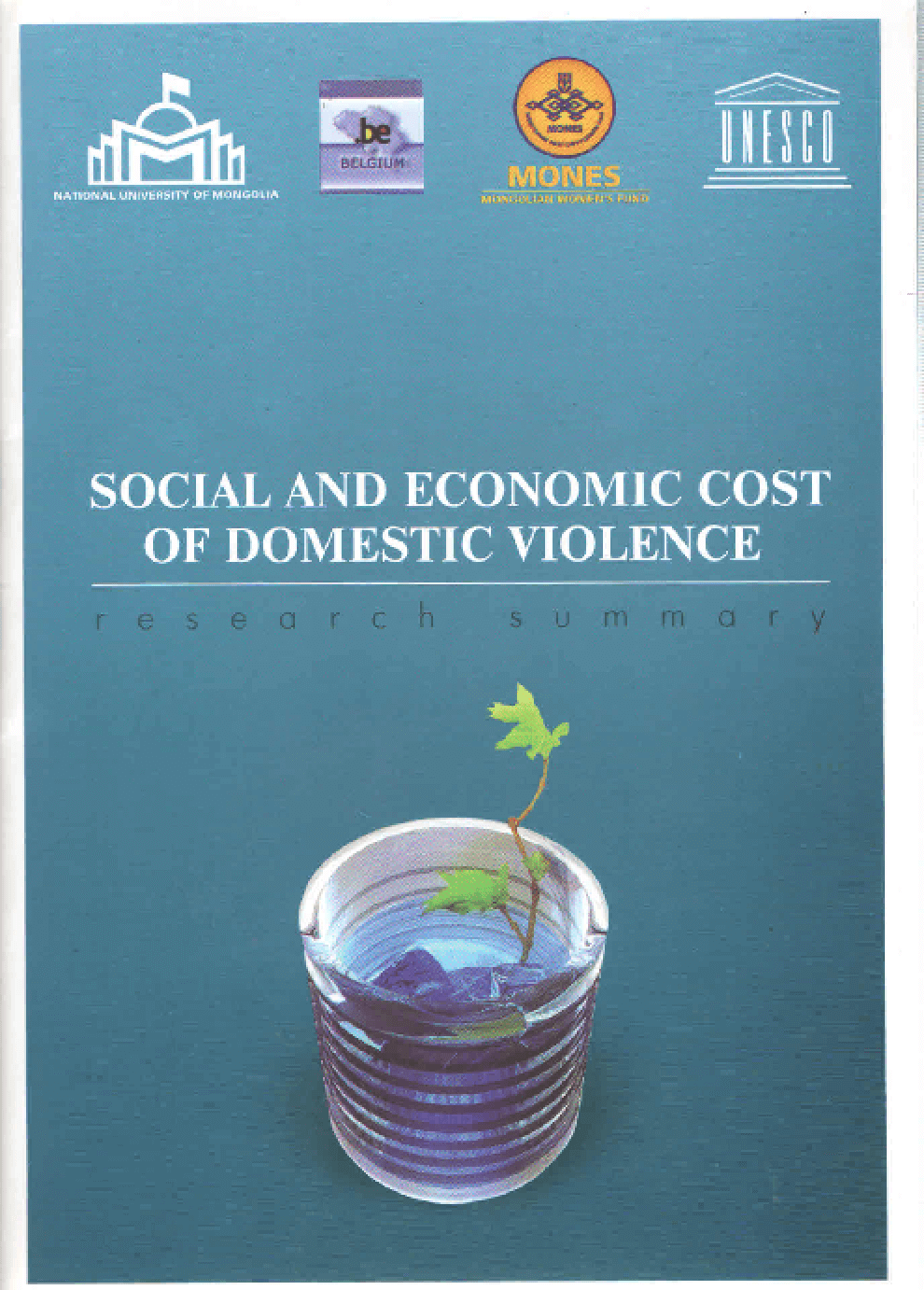Social and Economic Cost of Domestic Violence-Research Summary