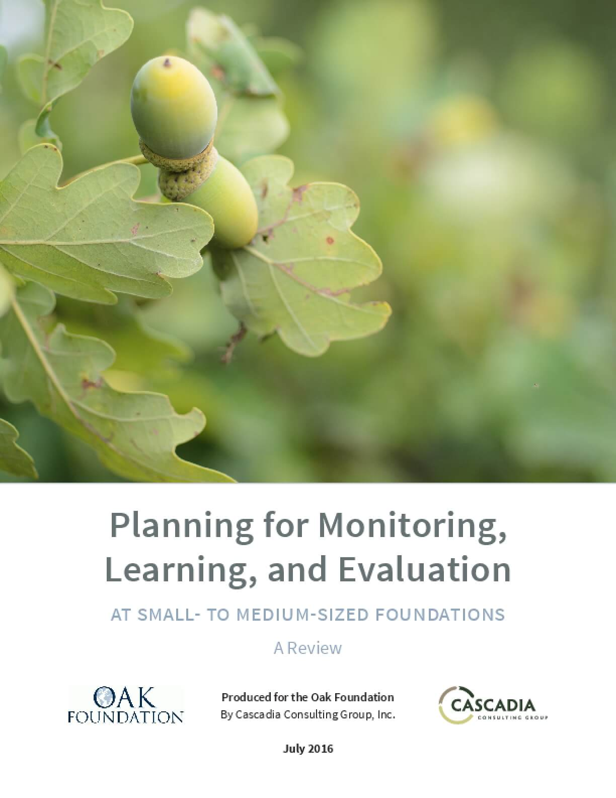 Planning for Monitoring, Learning, and Evaluation at Small- to Medium-Sized Foundations